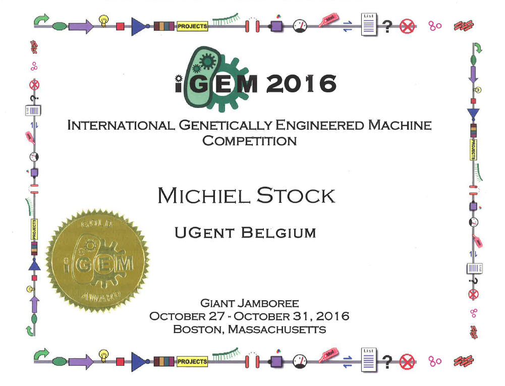 IGEM AWARDS
